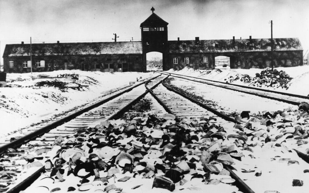 The Road to Totalitarianism