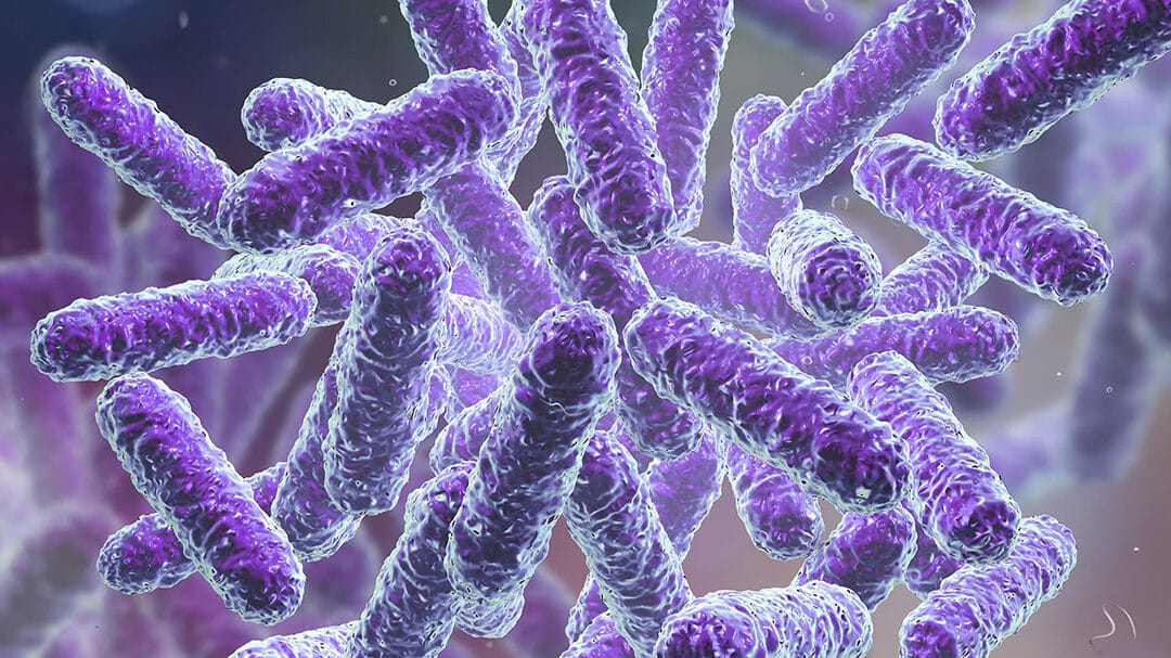 What Happened Last Year—Death and the Microbiome.
